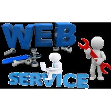 Pachet de Servicii cu Mentenanta, Asistenta & Service pentru Magazin Online Site Ecommerce