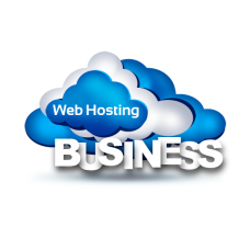 Hosting Business  Gazduire 500 GB