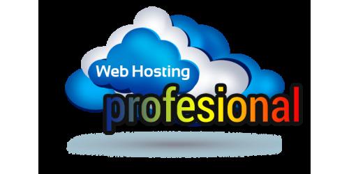 Hosting Profesional Gazduire 10 GB